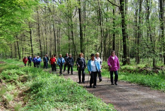 TVB Nordic Walking 036.JPG